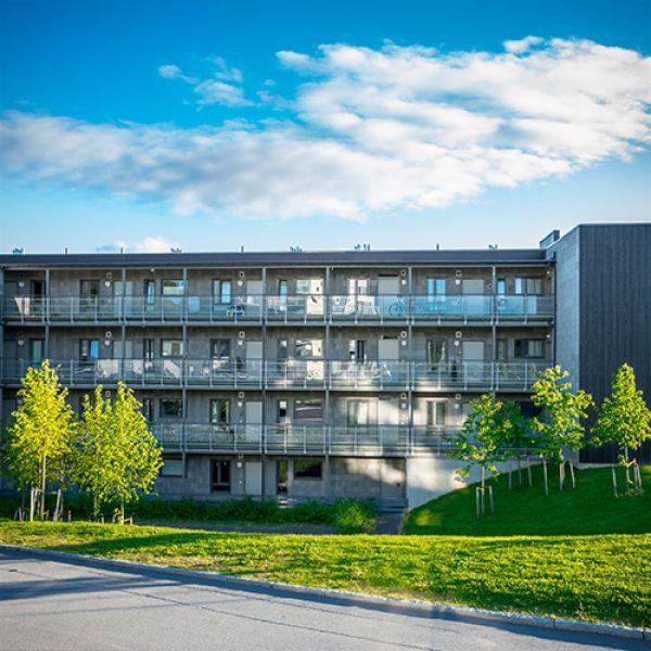 "Микрорайон ""UtleirHus 7"" в Тронхейме, Норвегия"